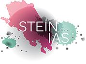 Stien IAS logo